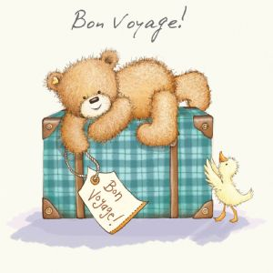 Good Luck and Bon Voyage Card